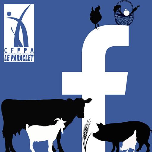 formation-facebook-producteur-éleveur-agriculteur-Le Paraclet